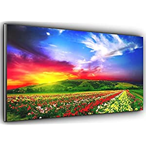 Rainbow Meadow Panoramic Canvas Art Print Picture Framed XXL 55 inch x 24 inch Over 4.5 ft wide x 2 ft high Ready to Hang