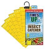 STV International Defenders Trampas para Insectos