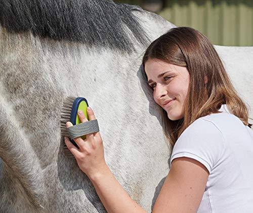 Adozen Pferde-Putzbox mit Inhalt für Kinder und Erwachsene | 9-Teilig befüllt | Soft Touch Antirutschgriffe | Limette-Grün-Gelb - 2