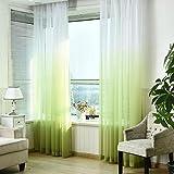 HITSAN modern 3d print curtains for living room kids bedroom drapes gradient blue cotton curtain fabric single panel window cortinas Green Tulle W100cmxL250cm Hooks