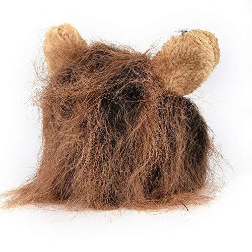 Mamum - parrucca per gatto con orecchie e criniera da leone, per halloween, coffee, taglia unica
