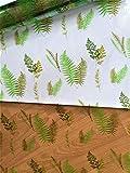 Astic Group Botanical - Nastro arricciato in cellophane trasparente, 1 m x 80 cm, 2 m, 2 m di nastro arricciatoio/etichetta regalo 5 x 3 cm