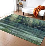 YTTY Teppiche 3D-Druck Rutschfest/Saugfähig/Weich Geschmeidig Schlafzimmer-Schlafraum Garderobe Bedside-Decke Badezimmer-Küchenteppich-Innenmatte, 120 x 160 cm, 1