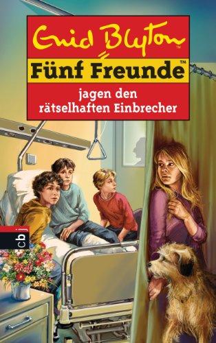 Fünf Freunde jagen den rätselhaften Einbrecher (Einzelbände 59)
