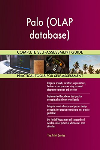 Palo (OLAP database) All-Inclusive Self-Assessment - More than 680 Success Criteria, Instant Visual Insights, Comprehensive Spreadsheet Dashboard, Auto-Prioritized for Quick Results