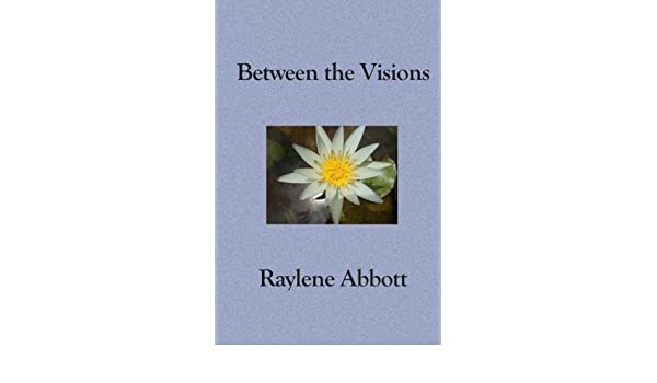 Buy Between the Visions: Seeing Through the Eyes of an