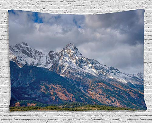 MLNHY Landscape Tapestry, Snow-Capped Grand Teton Mountains Wyoming National Parks Photography Artwork, Wall Hanging for Bedroom Living Room Dorm, 80 W X 60 L Inches, Multicolor Special Blend Snow