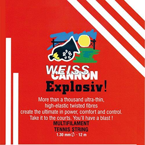 Preisvergleich Produktbild Weiss Cannon Saitenset Explosiv,  Natur,  12 m,  0545140122400016