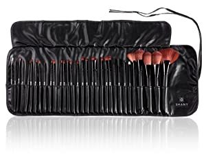 SHANY Super Professional Brush Set with Leather Pouch, 32 Count by SHANY [Beauty]