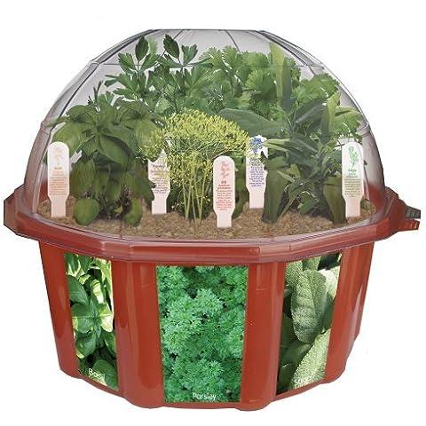 DuneCraft Dome Terrariums - Herbs by DuneCraft - Dunecraft Culinary Herb Garden
