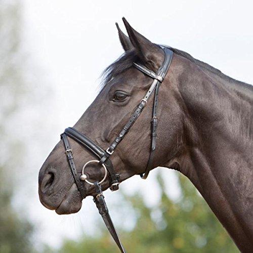 Kieffer Trensenzaum Ultrasoft schwarz englisches Reithalfter Stirnband mit Perlen gepolstertes Genickstück professional , Größe Pferd:Warmblut