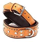Hundehalsband aus Echt Leder, Hunde Halsband , Hundehalsbänder. dcl-022, Farbe:Schwarz;Halsband Länge:ca. 63 cm Halsumfang 48-58 cm