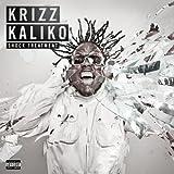 Songtexte von Krizz Kaliko - Shock Treatment