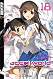Accel World - Novel 18