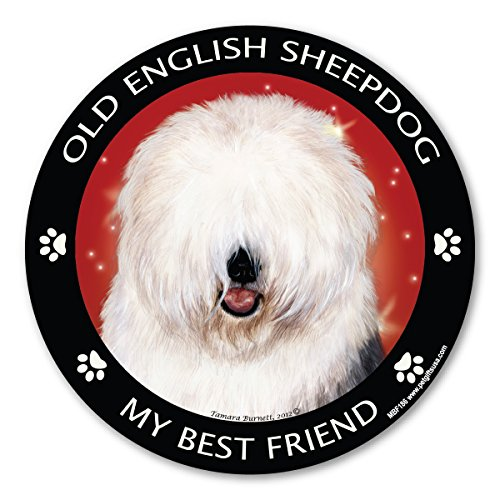 pedigrees-magnetica-magnete-bobtail-my-best-friend
