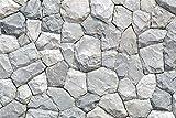 Cassisy 3x2m Vinilo Telon de Fondo De Cerca Resumen Rústico Textura Naturaleza Piedra Antigua Muro de Piedra Fondos para Fotografia Party Photo Studio Props Photo Booth
