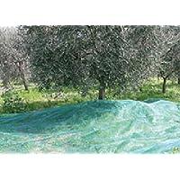 Red de aceitunas en toallas Mt. 6x6 - Apertura