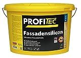 ProfiTec Fassadensilicon P411 FA 5l