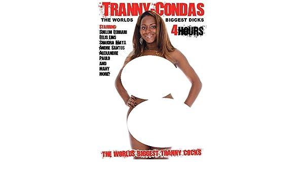Shemale tranny porn tube