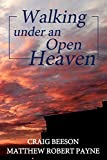 #2: Walking under an Open Heaven