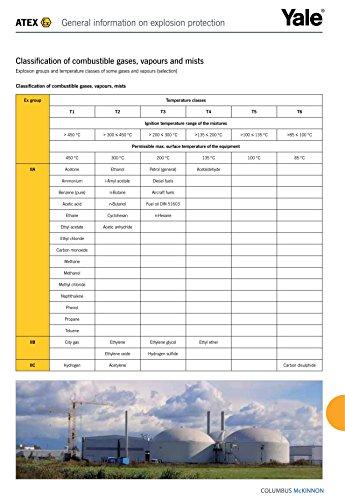 Yale AMZ1022353 Integral-Carrello, carico massimo 0,75t e ITP, ATEX m, tipo A, per autunno, Standard, con catenina, Contenitore per alimenti, 500 kg, 4 m