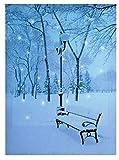 Weihnachts-Motiv, mit LED-Lichtern, Weihnachtsdekoration, 40 x 30 cm-Deko Winter Scene-Snowy Bank)