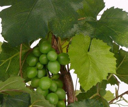 artplants – Künstlicher Rebstock mit 79 Blättern, 60 cm, Outdoor – Deko Weinstock/Wein Reben Pflanze