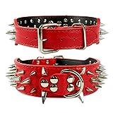 BullyBreeds Halsband aus Kunstleder mit spitzen Nieten