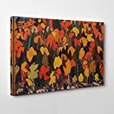 BIG Box Art Tom Thomson Autumn Foliage Canvas Wall Picture Ready to Hang, Multi-Colour, 20 x 14-inch