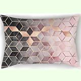 SWEUoYKo 50X75 cm Pillow Case PINK and Grey Gradient Cubes Muster Home Decor Square Dekokissen Fall Twin Seiten gedruckt Kissenbezug 20'x30' Kissenbezug (Nur Abdeckung Keine Einfügung)