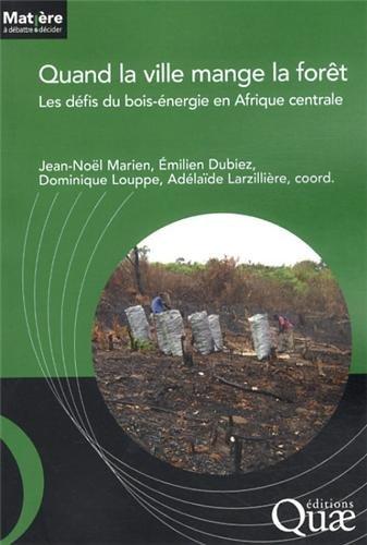 Quand la ville mange la forêt: Les défis du bois-énergie en Afrique centrale