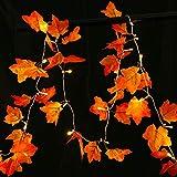 TecUnite Ahorn Girlande Herbst Girlande für Herbst Erntedankfest Weihnachtsdekoration (8,2 Fuß)