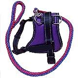 JHC Hundebrustgurt, Explosionsgeschützter Hundebrustgurt 45-92cm Verstellbereich Geeignet Für Kleine Und Mittelgroße Hunde (lila Blau),Purple-XL