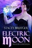 Electric Moon (A Raven Investigations Novel Book 2)