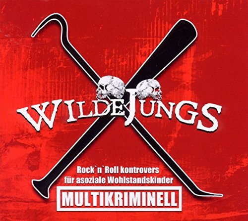Multikriminell