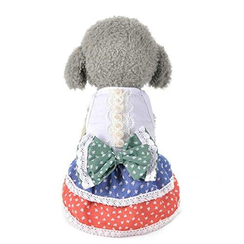 Hmeng Haustier Rock, Niedlichen Hund Katze Bogen Tutu Kleid Spitze Welpen Prinzessin Hund Kostüm Kleidung Kleidung (S, (T Niedlichen Halloween Kinder Shirts)