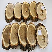GTK – Cornamenta & Trofeo madera de crucero 10 unidades acacia REH trofeos carteles grandes con compartimento de mandíbula cervatillo árbol disco de árbol