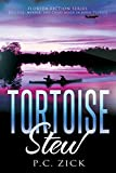 Tortoise Stew (Florida Fiction Book 1)