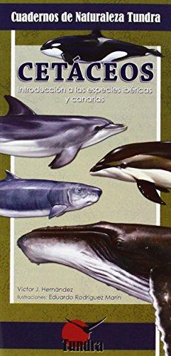 Cetáceos. Introducción a las especies ibéricas y canarias (Cuadernos De Naturaleza) por Victor J. Hernández