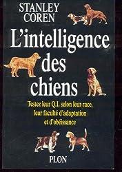 L'intelligence des chiens : Testez leur QI selon leur race et leur faculté d'adaptation et d'obéissance
