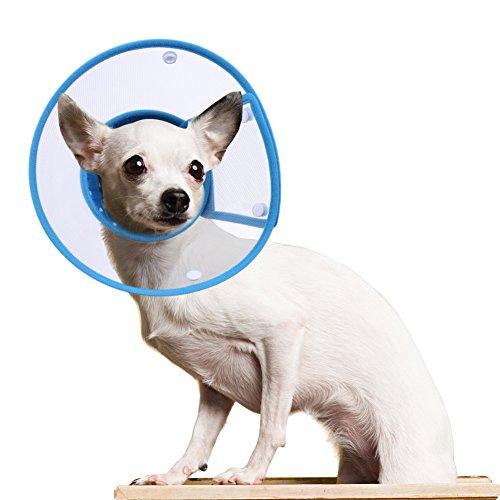 Hundehalsbänder Halskrausen Kegel, PETBABA Gepolstert Elisabethanisch Hunde Halsband für Welpen Kätzchen Blau M