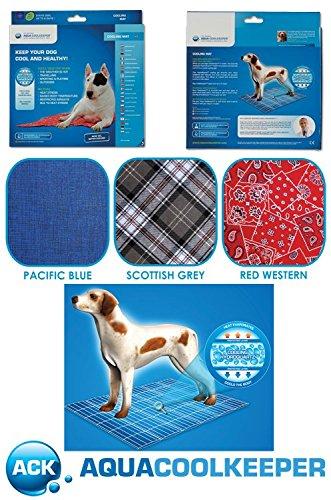 Aqua Coolkeeper Hunde Kühlmatte blau, 60x50cm