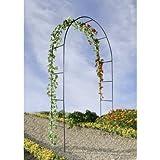 OSE Arche de jardin pour plantes grimpantes - Vert