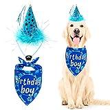 SCENEREAL - Bandana e cappello per il compleanno del cane