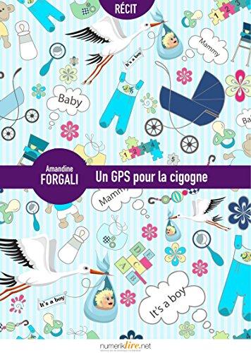 Un GPS pour la cigogne
