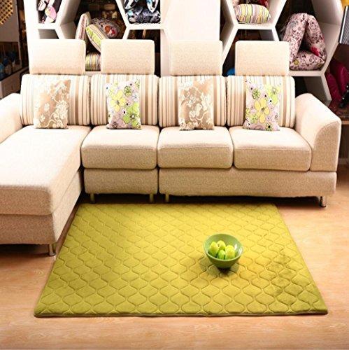 CYY Teppich Coral Velvet Mesh Fabric Teppich Wohnzimmer Sofa Schlafzimmer Küche Komplette Shop Crawl Decke 80 cm * 160 cm, 6 -