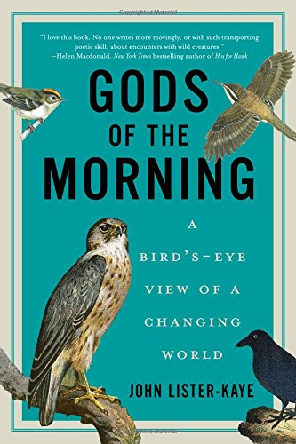 gods-of-the-morning-a-birds-eye-view-of-a-changing-world