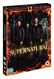 Supernatural S12 [Edizione: Regno Unito]