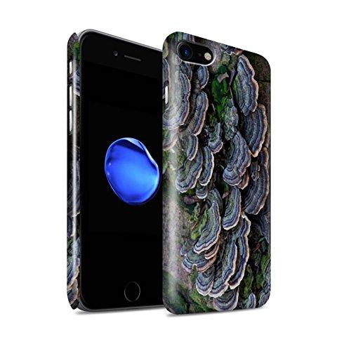 STUFF4 Glanz Snap-On Hülle / Case für Apple iPhone 8 / Vene Muster / Pflanzen/Blätter Kollektion Fungus