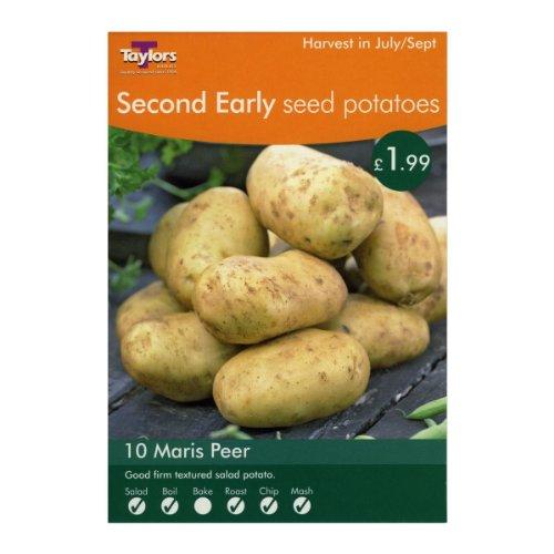 Image of Vegetable - Taylors - Seed Potatoes - Maris Peer - 10 Tubers - Second Earlies
